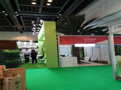 Beijing Palm at Big 5 exhibition in Dubai 2019